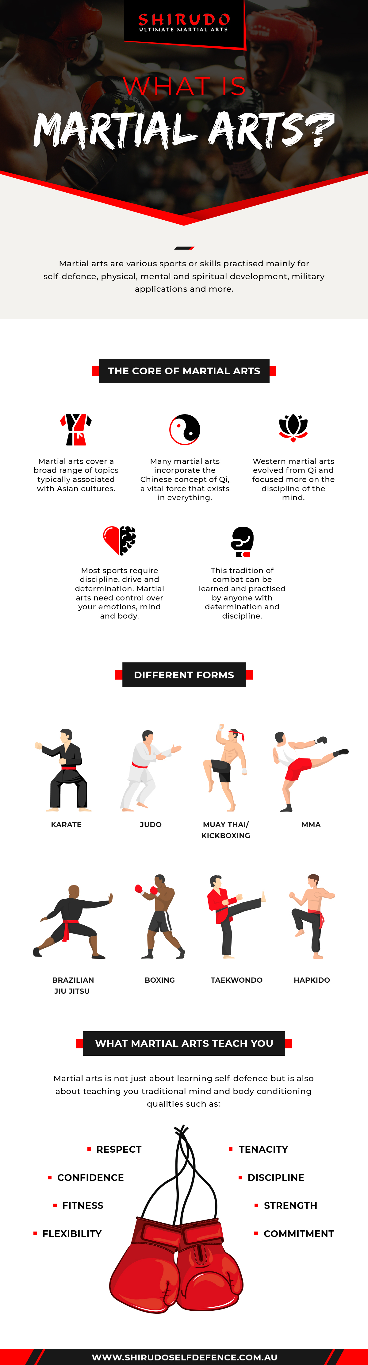 What is martial arts infographic