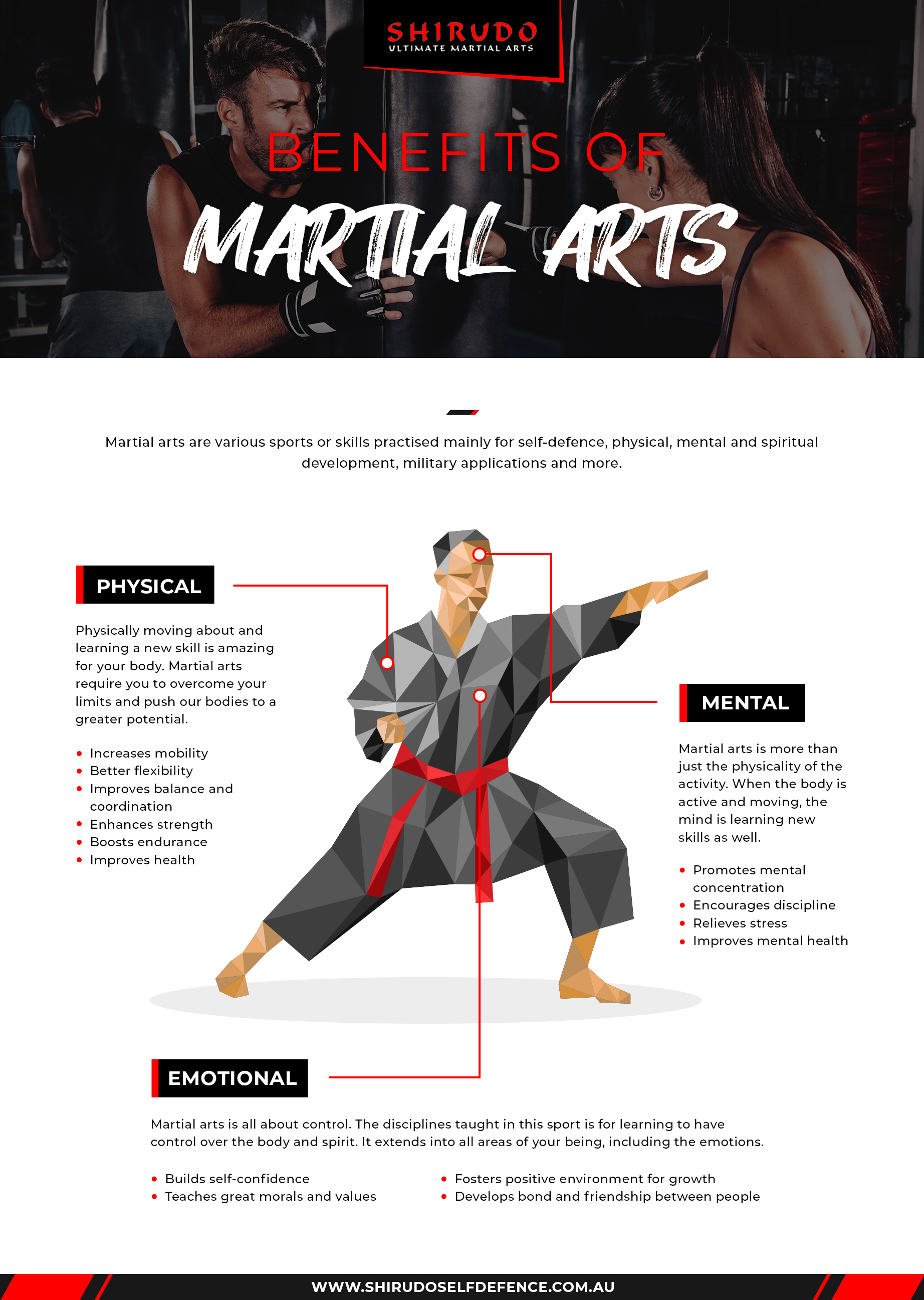 Benefits of martial arts infographic