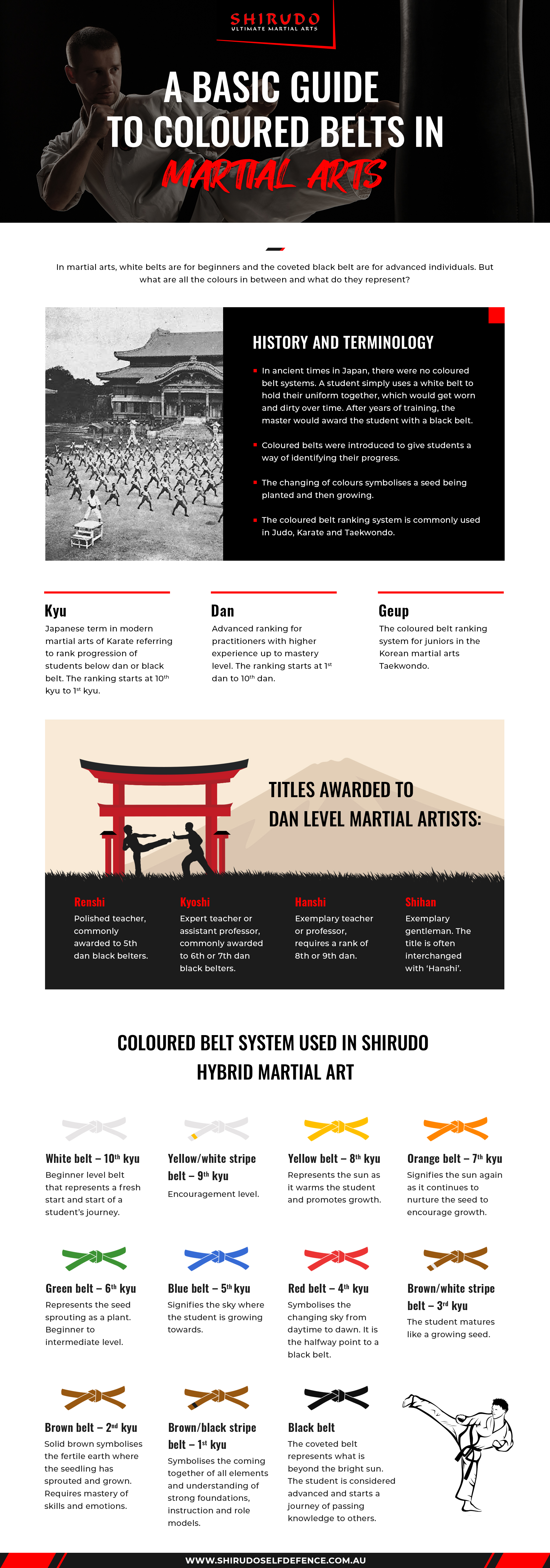 Basic guide to coloured belts in martial arts infographic