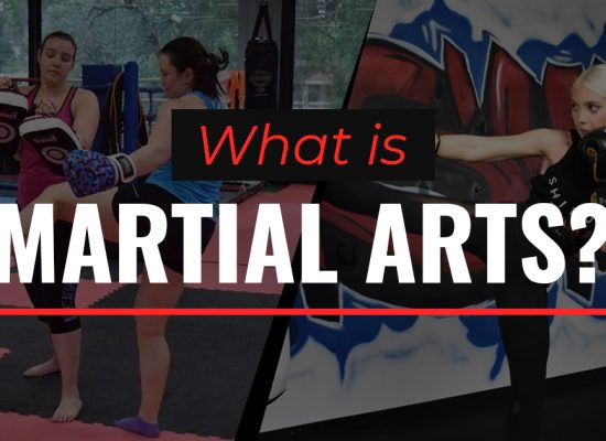What is martial arts?